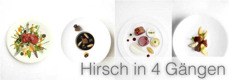 Hirsch-in-4-Gängen-4