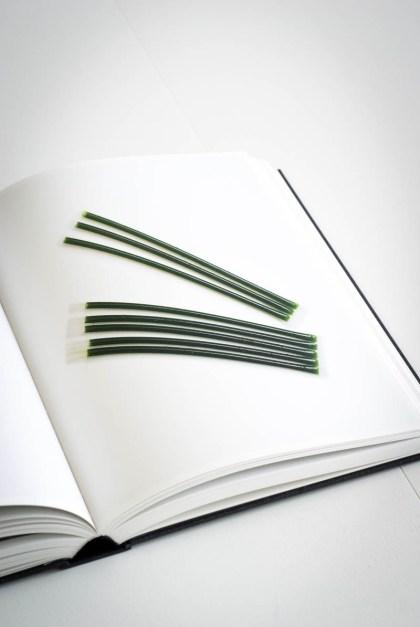Ronny Emborg - The Wizard`s Cookbook (5 von 6)