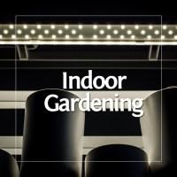 Indoor Gardening mit Prêt à Pousser