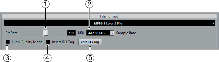 Mp3 (mpeg 1 Layer 3) Files