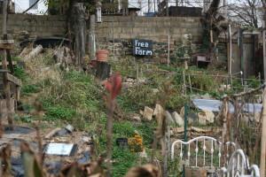 Baltimore Free Farm