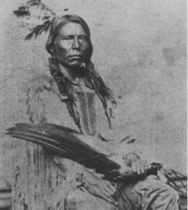 Chief Crazy Horse