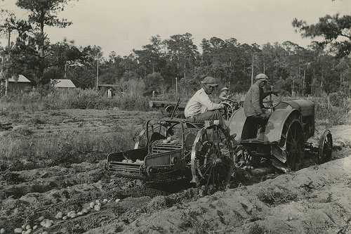 African American farmers
