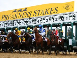 Preakness 2016 (Credit: buschleaguesports.com)