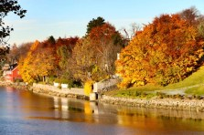 Autumn colors in Trondheim.