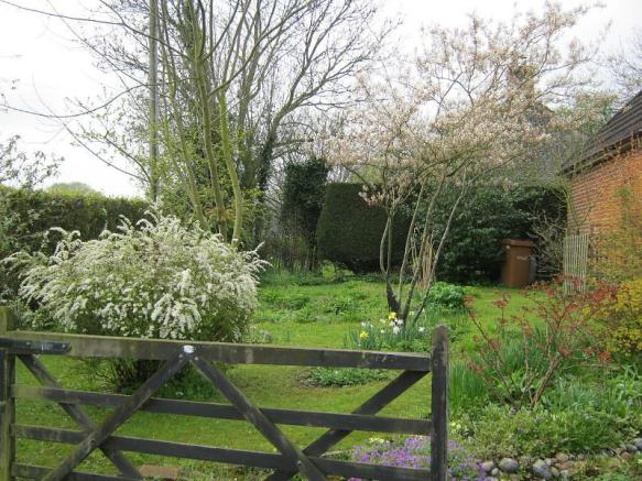 Side garden, early spring