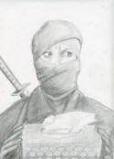 Ninja mom 2