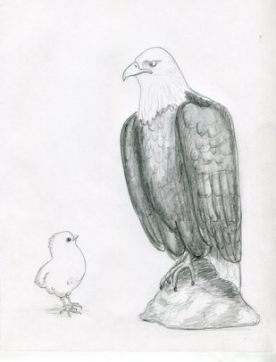 The chick and the eagle