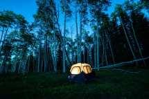 dispersed camping - stellar