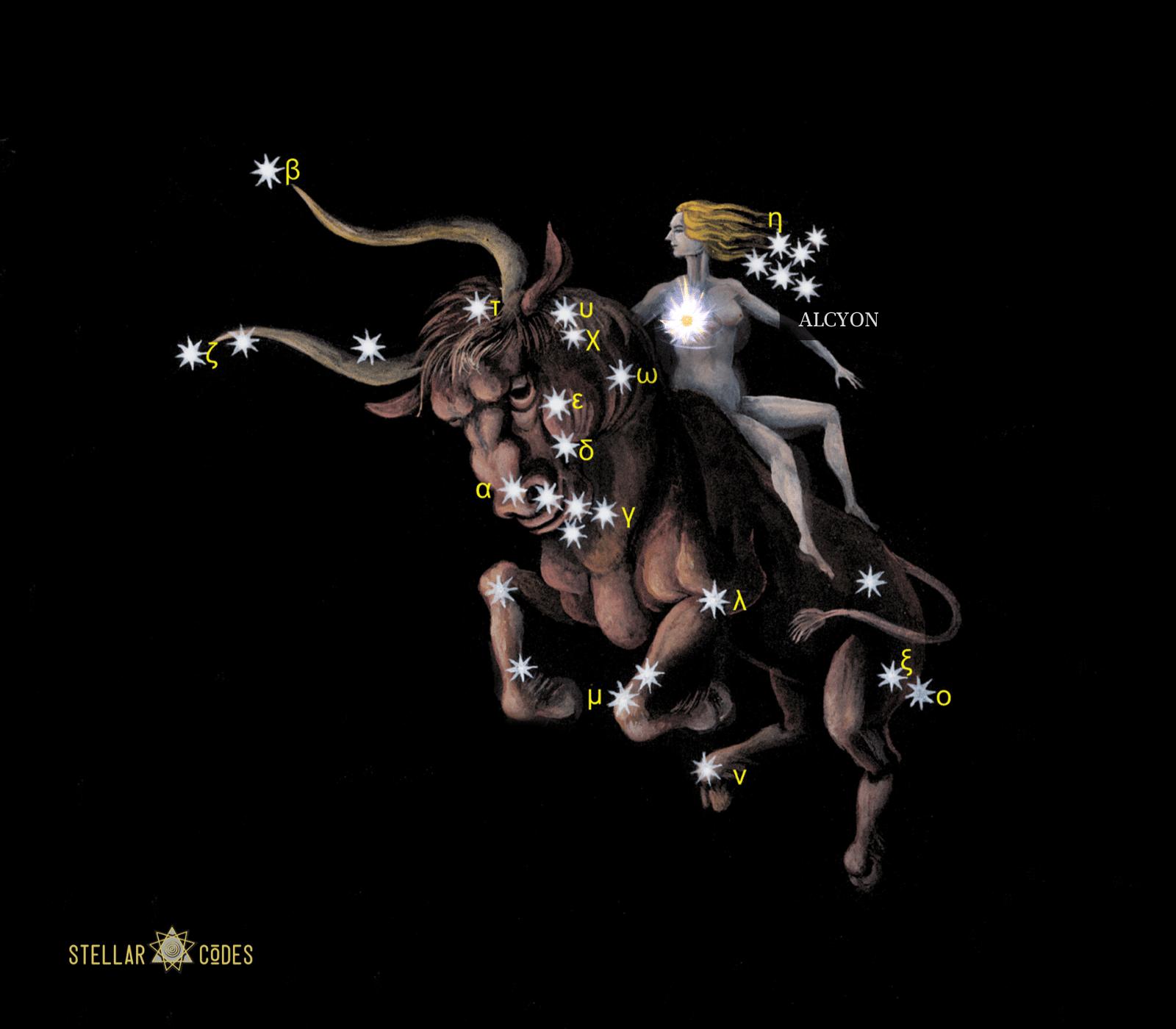 Stellar Code Alcyone