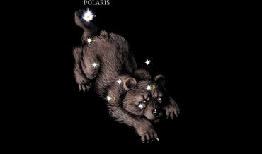 Stellar Code Polaris