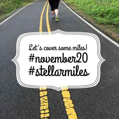 Welcome to November! My challenge this month is to walk/run 20 miles. Will you join me? {Blog post link in bio} #stellarmiles #november20 #walk #run #fitness #fitblog