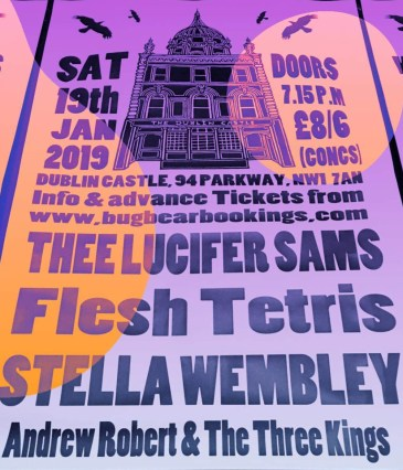 Stella-Wembley-supporting-Flesh-Tetris.jpg