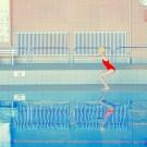 Swimm_It's_Nice_That_11