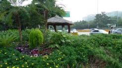 Yeouido roadside