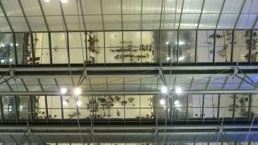 Suvarnabhumi Airport ceiling