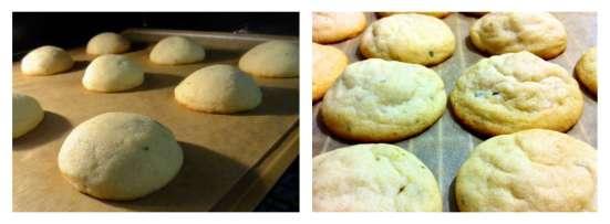 Lime Tarragon Cookies - 31