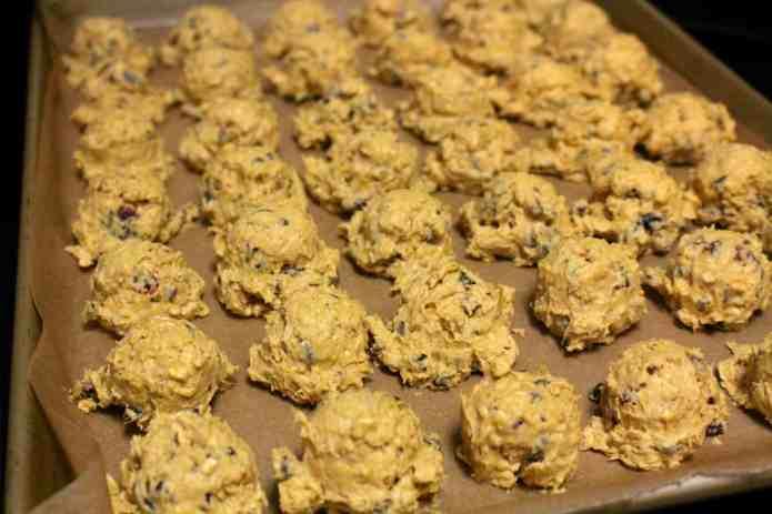 Pumpkin Harvest Dunking Cookies - 12