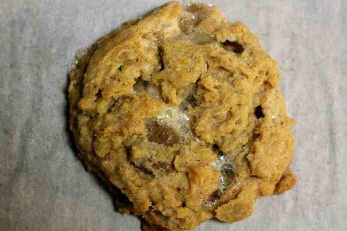 Campfire Cookies - 16