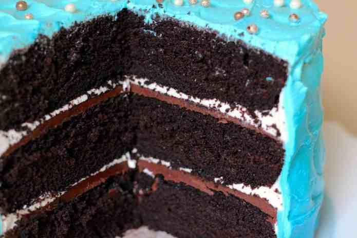 Wintermint Cake - 13