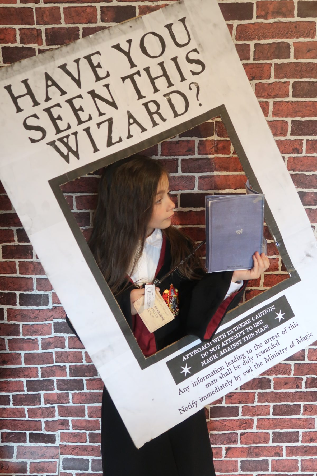 This is a picture of Have You Seen This Wizard Printable regarding etsy editable