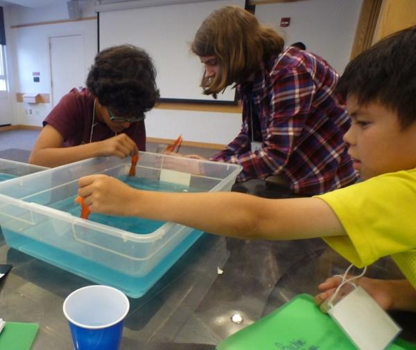 Oil Spill Cleanup Center Stem Education