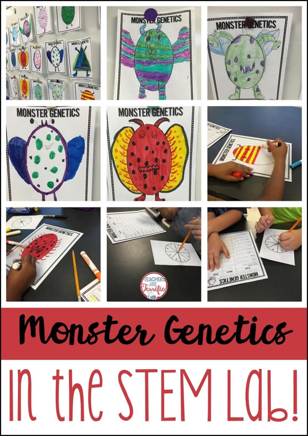medium resolution of Genetics in the STEM Lab! - STEM Activities for Kids