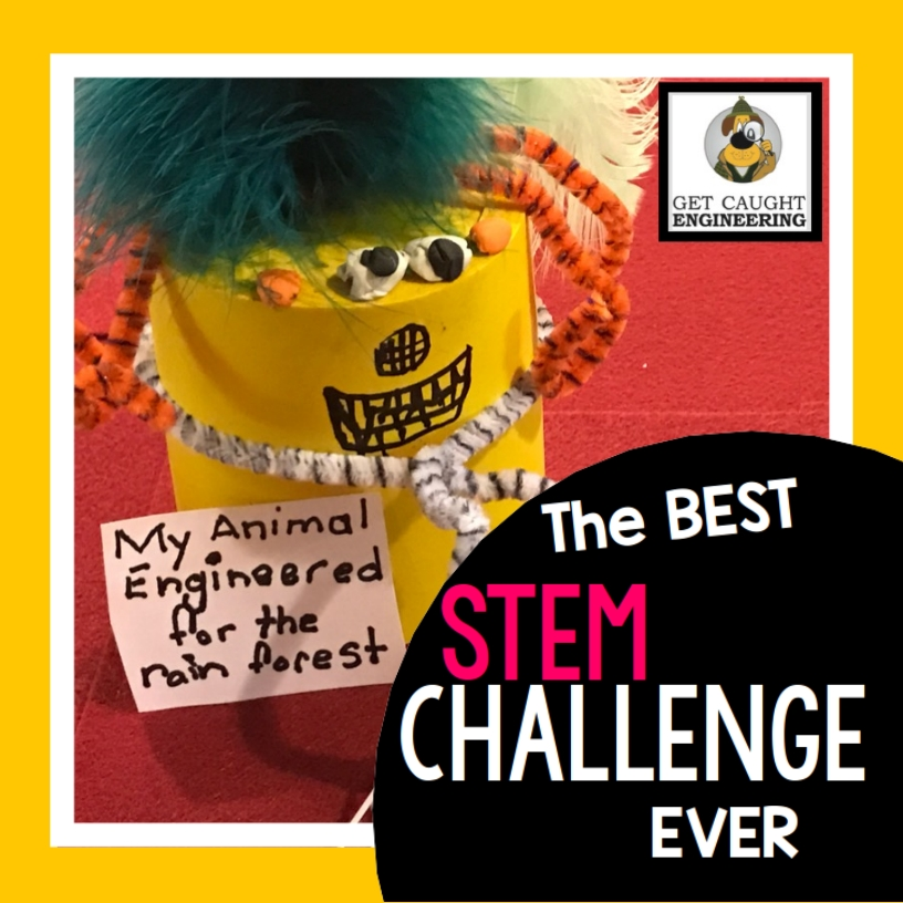 Animal Adaptations STEM Challenge Get Caught Engineering