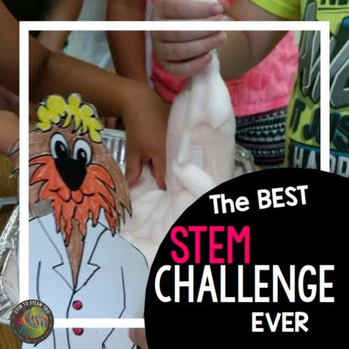 Sammie STEAM Family STEM Challenge