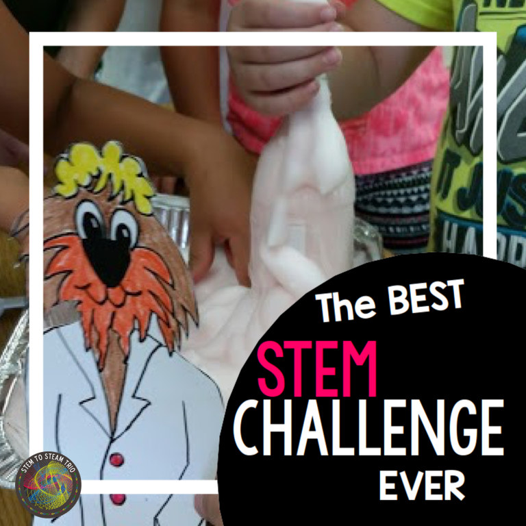 The Best STEM Challenge EVER