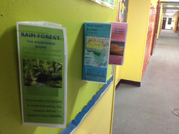 Earth' Biomes Brochures - Science Technology Engineering