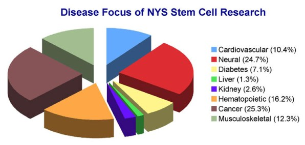 Image result for stem cell research for diabetes picture