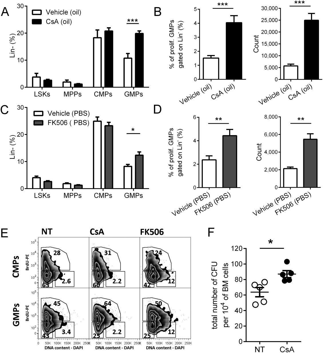 Calcium And Calcineurin Nfat Signaling Regulate