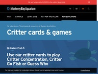 Monterey Bay Aquarium Critter Cards and Games