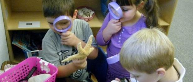 Early Childhood STEM Investigations