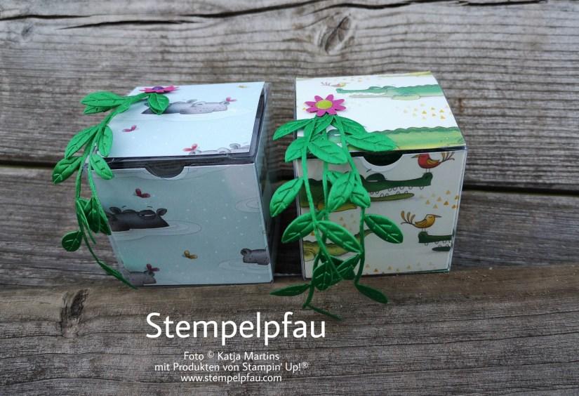 Youtube Video, Geschenkbox, Stempelpfau, Stampin' Up!