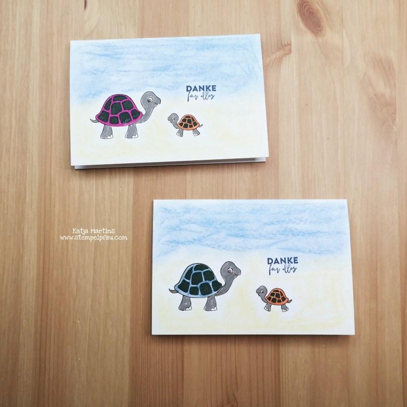 Schildkröten Dankeskarten