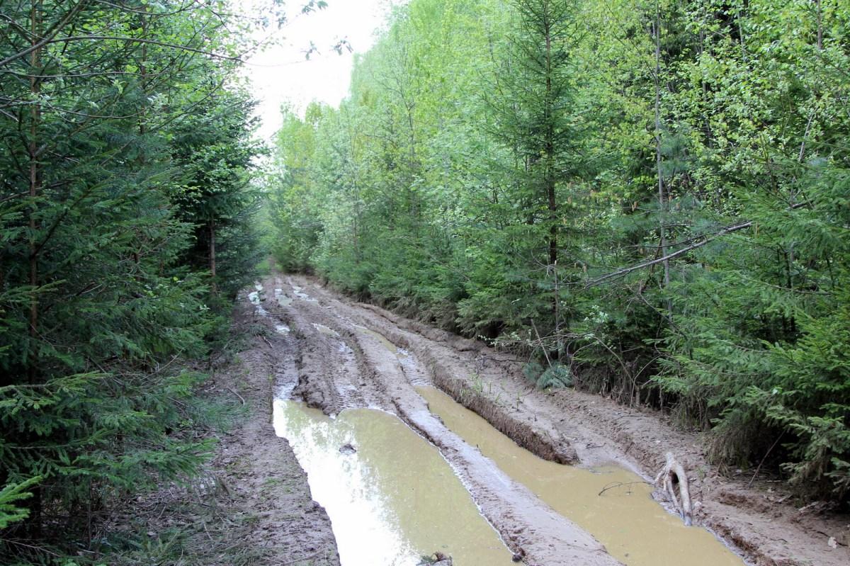 Отчёт о веломаршруте вокруг Серпухова