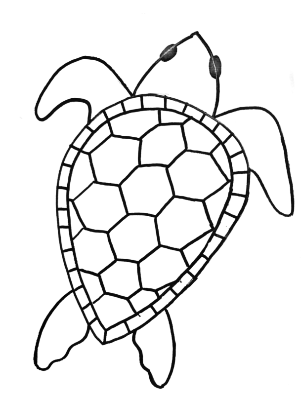 Sea Turtle Painting Step By Step Acrylic Tutorial For Beginners