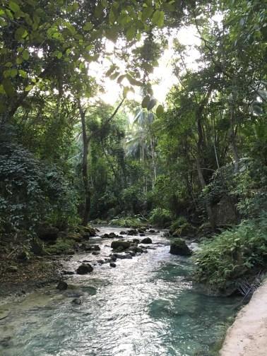 Caminho para chegar nas cachoeiras
