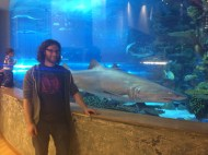 Dave making friends with a shark..