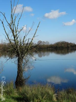 Roman Lake