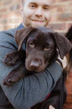 stephanie-green-weddings-puppy-portrait-ryan-jyothi-chocolate-lab-dog-pawtraits-walthamstow-london-20