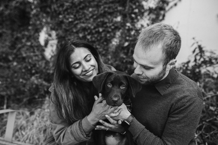 stephanie-green-weddings-puppy-portrait-ryan-jyothi-chocolate-lab-dog-pawtraits-walthamstow-london-63
