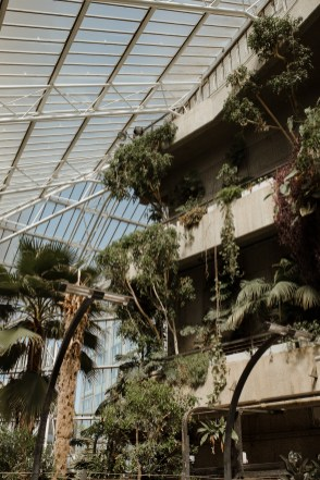 stephanie-green-weddings-barbican-conservatory-wedding-london-architecture-lover-171
