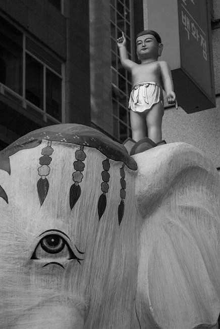 buddha_elefant