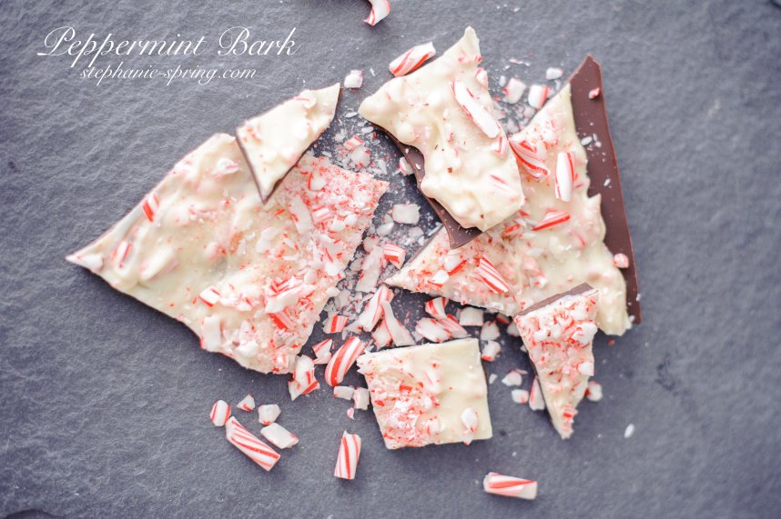 Easy Peppermint Bark Recipe at: stephanie-spring.com