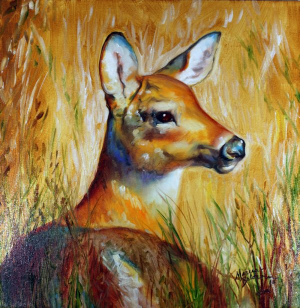 Deer Wildlife Oil Paintings