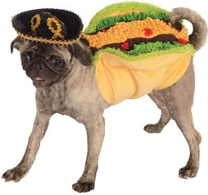 Are you into pet Halloween costumes? Here are StephanieCristi's ideas for your pup this Halloween, plus costumes if you want to coordinate with your pooch!