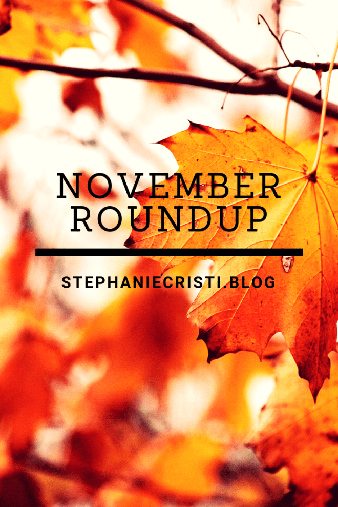 StephanieCristi shares a November roundup of her content, as well as some behind-the-scenes goodies. Her content included blog posts on: health, blogging, and pets. 
